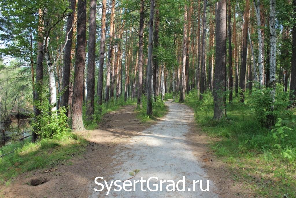 Дорога на Тальков камень