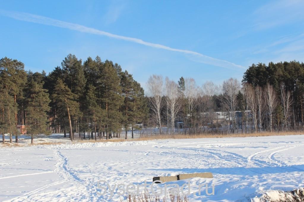 Поселок Школьный окружает лес