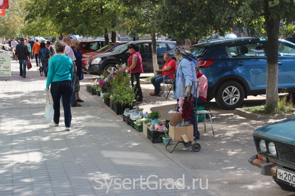 Мини рынок в центре Сысерти