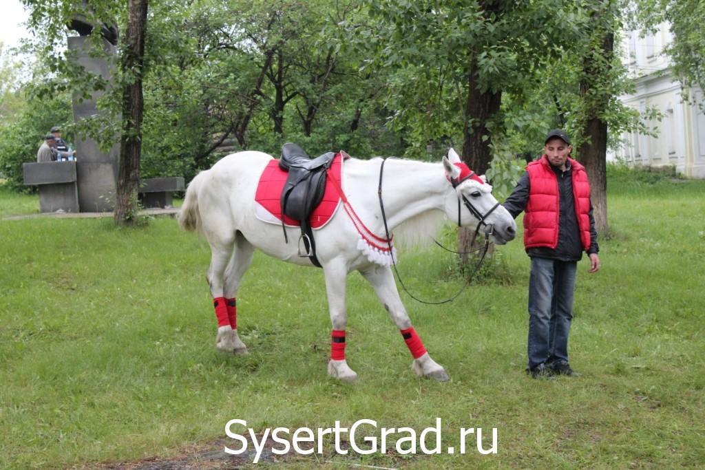 Лошадка со дня города Сысерть