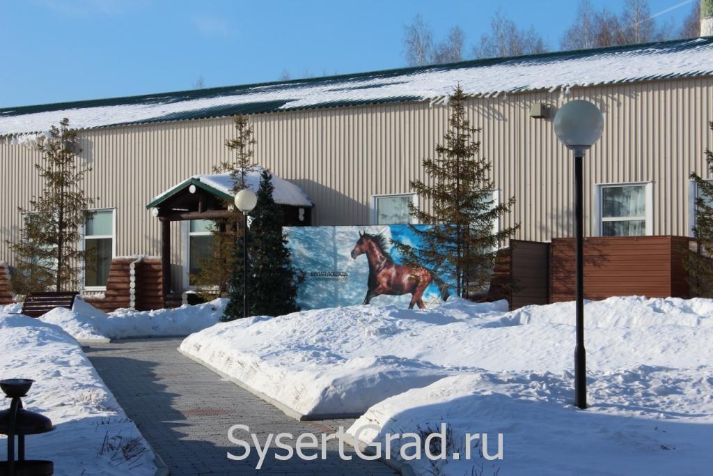 Плакат лошади у ресторана в конноспортивном клубе Белая Лошадь