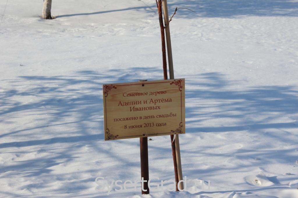 Семейное дерево Ивановых в конноспортивном клубе Белая Лошадь