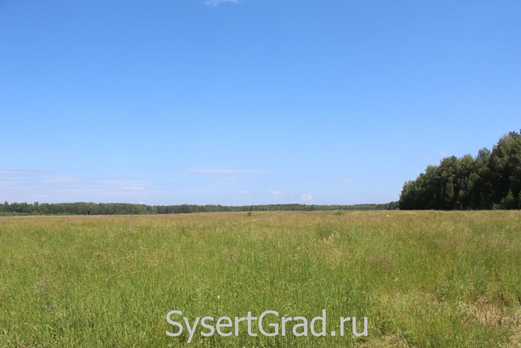 Мы набрели на поле возле Никольского