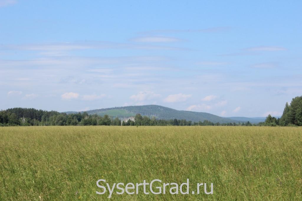 Вот такие пейзажи Сысертского района