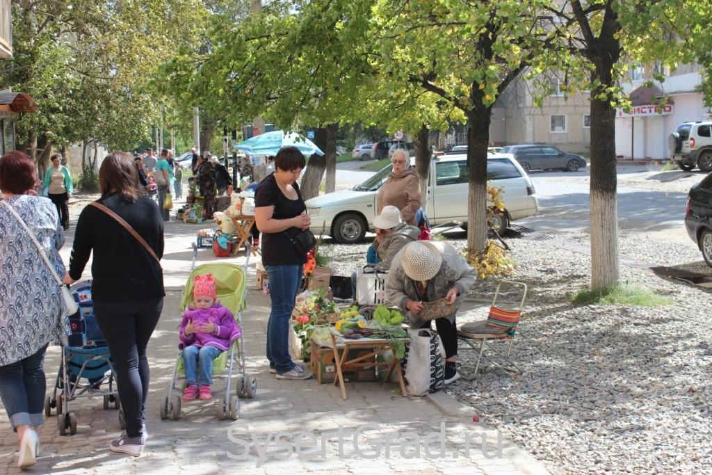 В выходные в центре Сысерти можно купить продукты с грядки