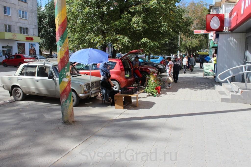 Жители Сысерти продают продукты и овощи с огорода