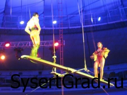 Гимнасты в цирке
