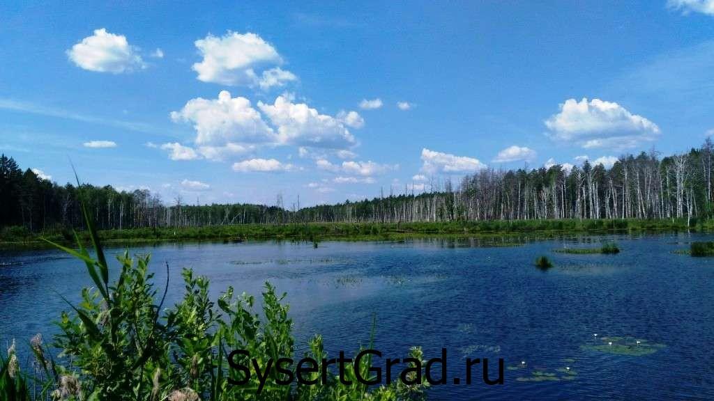 Водоем по Черновской дороге, в Сысерти много мест для отдыха