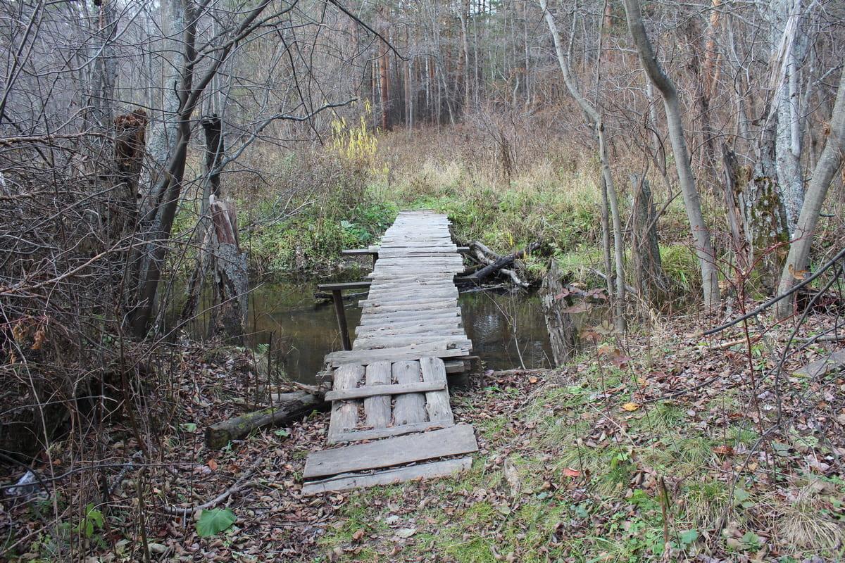 Река Каменка 16