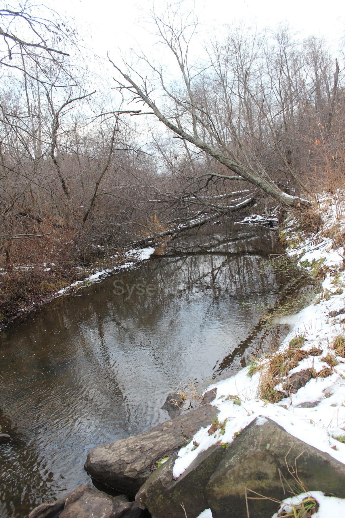 Река Каменка 33