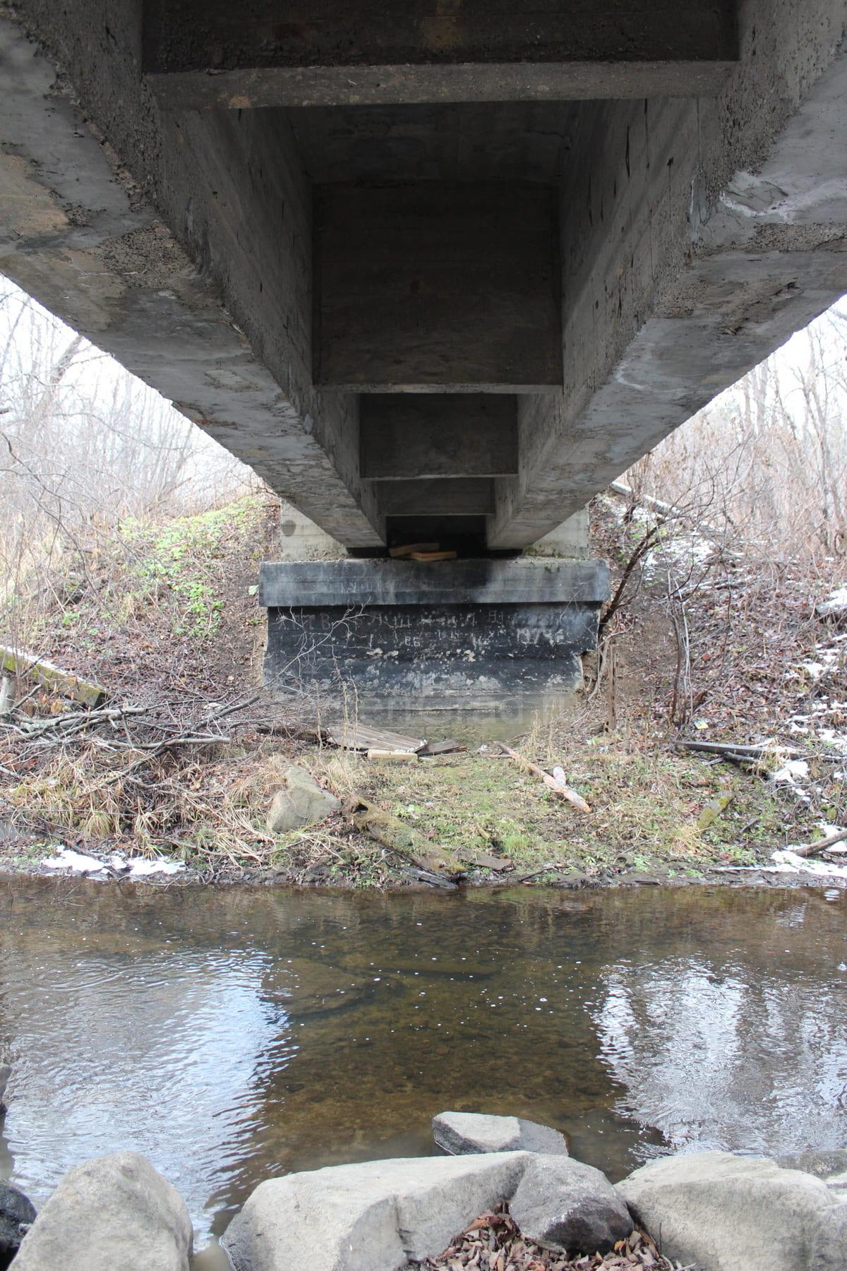 Река Каменка 67